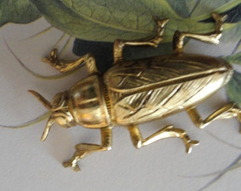 Medium Brass Beetles (1 pc )
