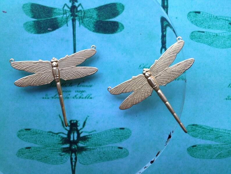 2 pc Firefly Dragonfly