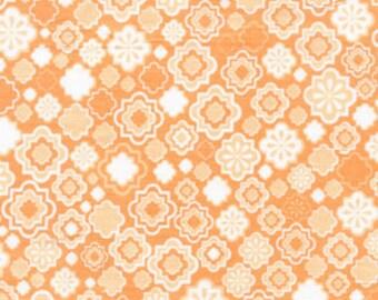 01679 - 1/2 yard of  Jenean Morrison Wildworld collection  Bon Vivant in Peach color