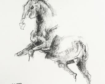 Charcoal Drawing of Horse on Paper, Equine Art, Animal, Modern Original Fine Art, Expressive Art