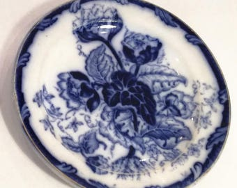blue Water Nymph Laveno dishes