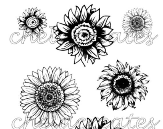 Sunflowers Print and cut Digital Download
