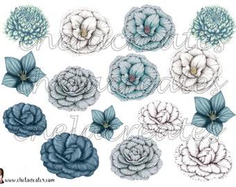 Blue Camelia Flowers