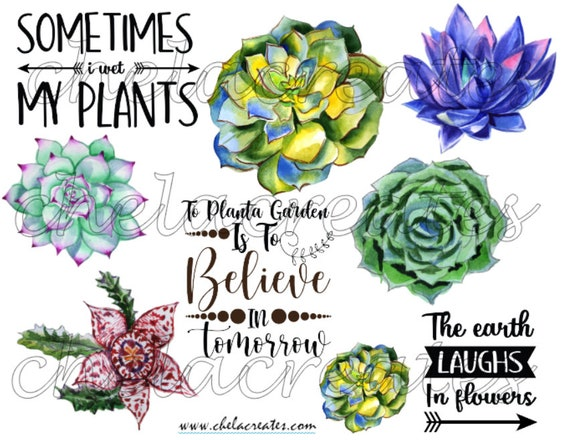 Sometimes I wet My Plants Printable