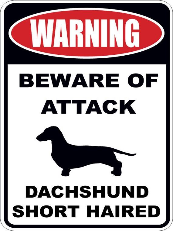 Beware of Attack Dachshund dog warning sign aluminum or | Etsy