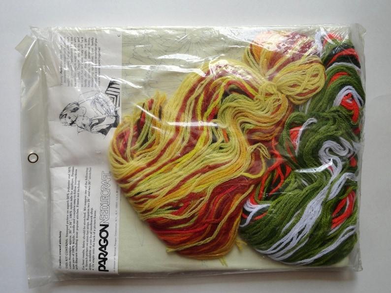 Paragon Crewel Embroidery Kit Floral Rhapsody 0408 Georgia Ball