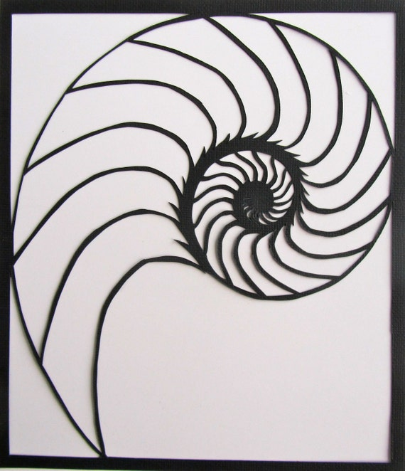 Nautilus Shell Silhouette Paper Cutout Handcut In Black Etsy