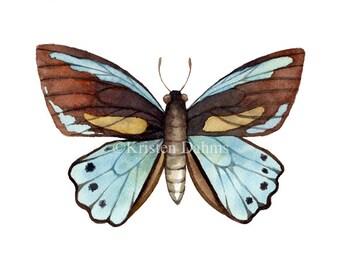 Blue Moth Original Watercolor Painting