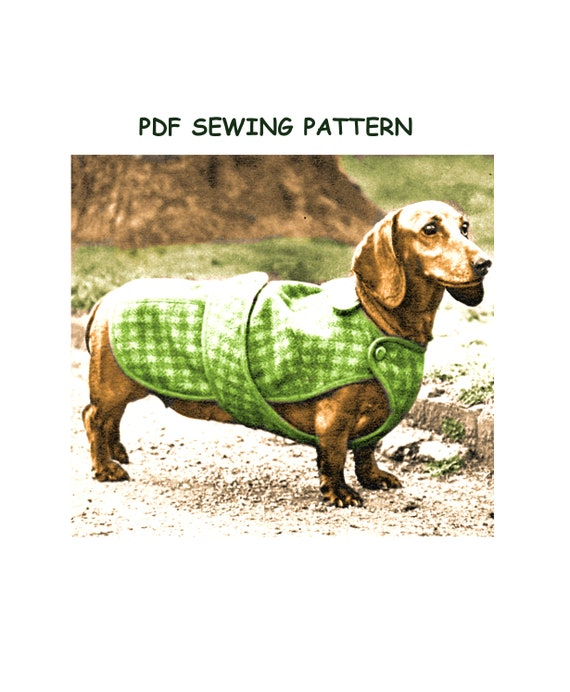 photo relating to Dog Coat Sewing Patterns Free Printable known as Total Measurement PDF Printable Sewing Behavior Immediate Obtain in direction of create a Dachshund Pet Pet dog Coat Belt and Button Fastening