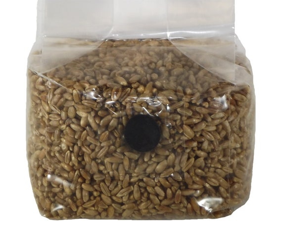 Sterilized Rye Berry Mushroom Substrate Grain Spawn Bag With Filter Patch