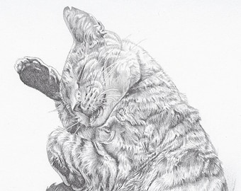 "Custom Pet Portrait 5x7"" - Drawing From Your Photo - Single Subject"