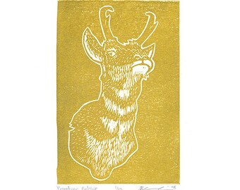 """Pronghorn Antelope (Gold) - Linocut Print - 4x6"""" - Limited Edition"""