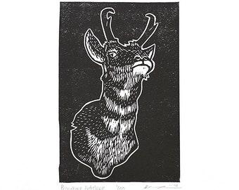 "Pronghorn Antelope (Black) - Linocut Print - 4x6"" - Limited Edition"