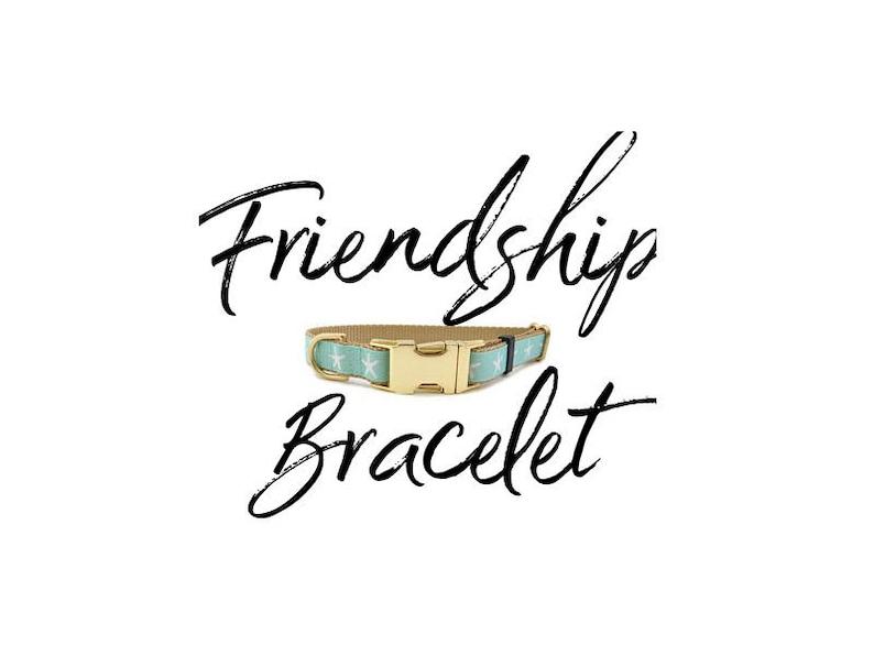Friendship Bracelet Dog Collar Sold Separately Dog Mom Or