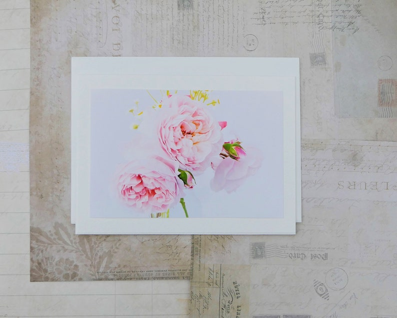 4 Photo Greeting Cards of Romantic Roses