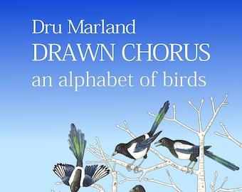 Drawn Chorus - an alphabet of birds