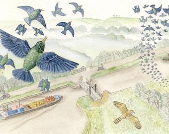Starlings at Sells Green (postcard)