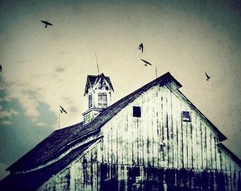 Blues /  Grays / Farm Scene / Barn / Farm Landscape / Barn Picture / Birds