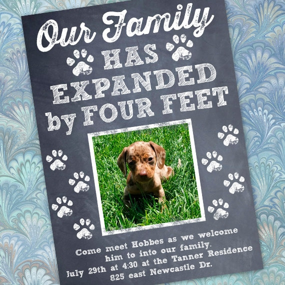 puppy announcement, new puppy announcement, puppy party, four legged friends, new baby, IN710