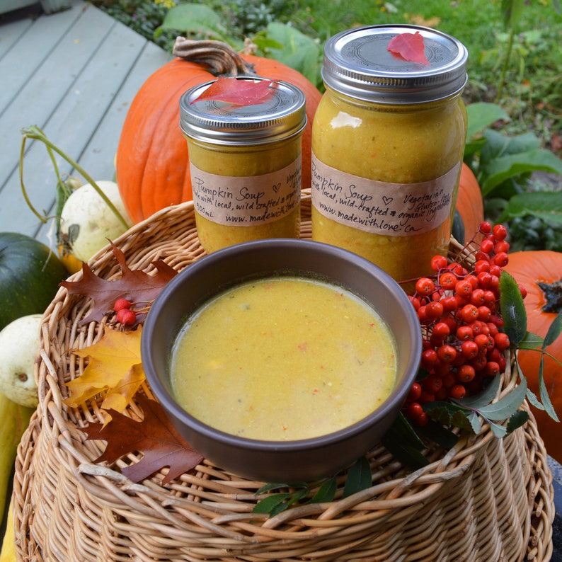 9 oz Garden Curry Eco Artisan Spice Blend Vegan Dairy-Free image 0