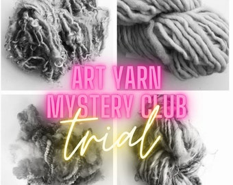 warm brights Art yarn of the month subscription
