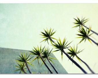 mid century modern, mid century print, california modern, mid century photo, mcm, architecture - Palms I, mid century print