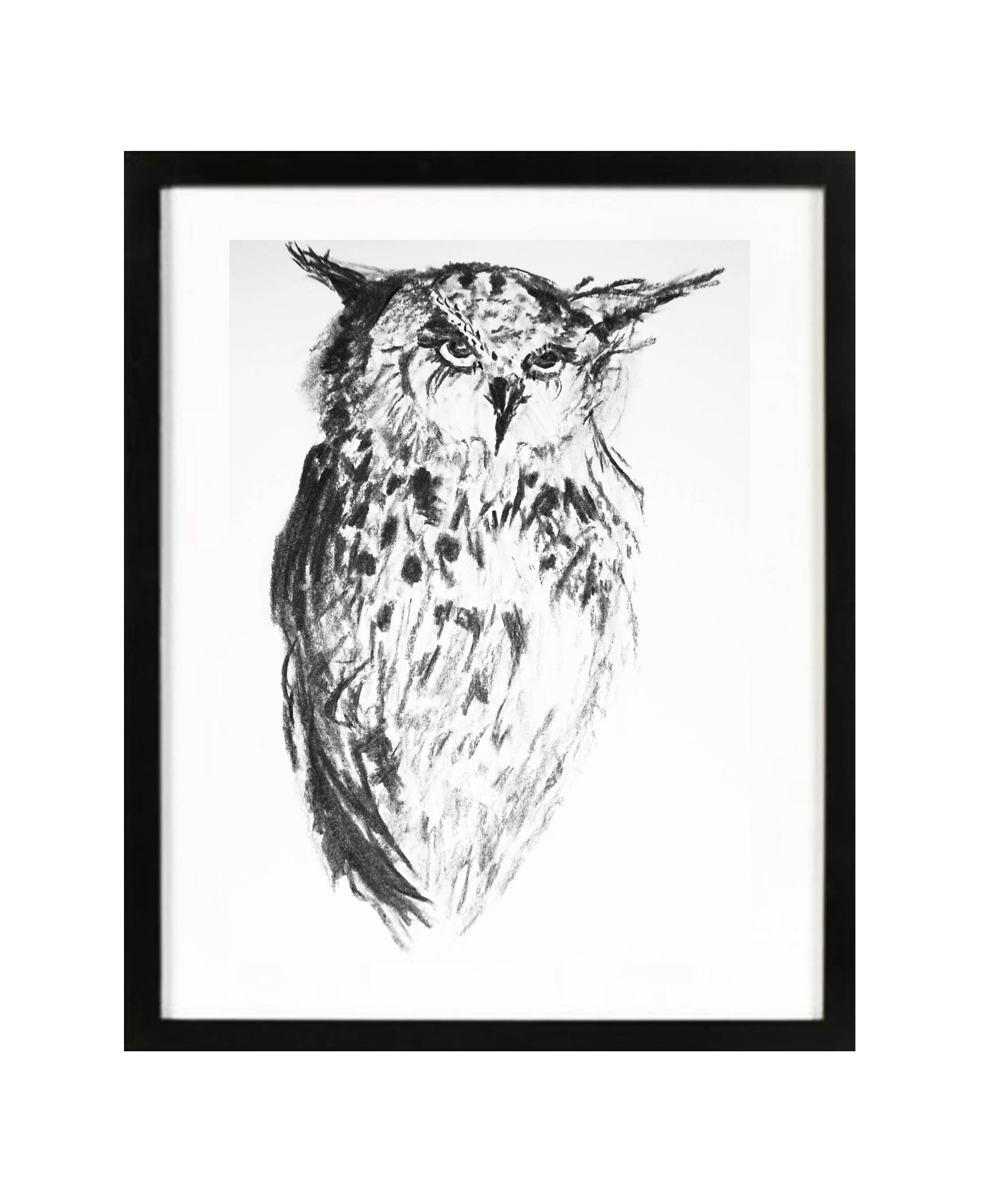 Owl charcoal original drawing owl illustration black white wall art owl big eyes owl lovers art nursery animals simple bw art