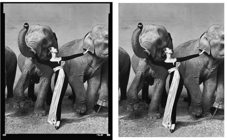 DOVIMA /& The Elephants \u2022 Photo Print \u2022 By Avedon \u2022 On Photographic Paper \u2022 ONLY ONE Free U S Shipping ! 16x20 Reproduction Is Available