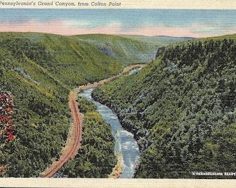 Colton Point, Pennsylvania, Grand Canyon - Postcard - Vintage Postcard - Unused (HH)