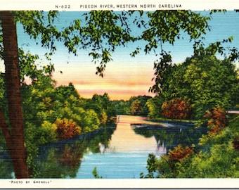 Pigeon River, North Carolina - Vintage Postcard - Postcard - Unused (II)