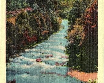 Pigeon River, Smoky Mountains, National Park - Vintage Postcard - Postcard - Unused (LL)