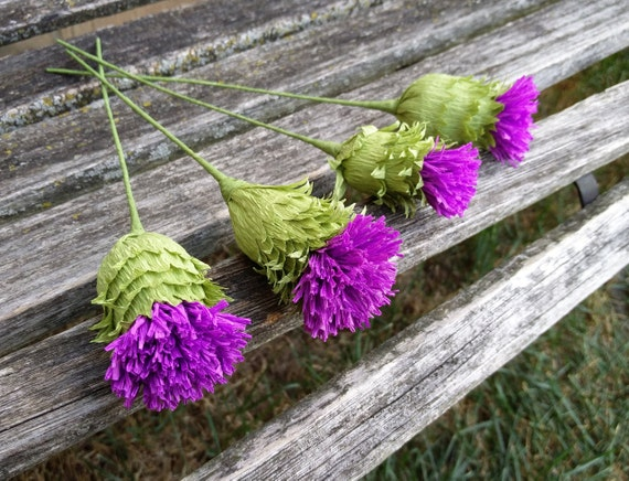 Paper Thistle. Perfect for First Anniversary, Weddings, Birthdays. Unique Gift. CUSTOM Orders Welcome