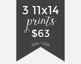 Pick any 3 prints - 3 piece 11x14 print bundle - Choose your prints - modern nature kitchen owl typography nursery photography illustration
