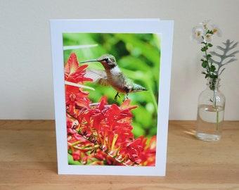 Hummingbird A Dream Come True - Inspirational / Birthday / Just Because Greeting Card