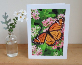 Viceroy Butterfly - Inspirational / Birthday / Just Because Greeting Card