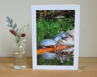 Three Turtles on Vermont Lake - Inspirational / Birthday / Just Because Greeting Card