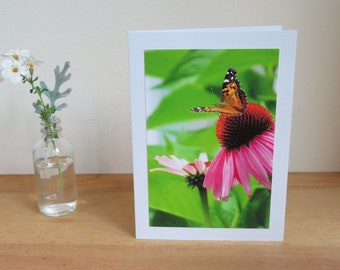 Butterfly on Echinacea Coneflower - Inspirational / Birthday / Just Because Greeting Card