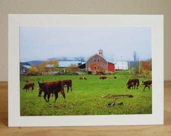 Vermont Cows by Barn in Autumn - Inspirational / Birthday / Just Because Greeting Card