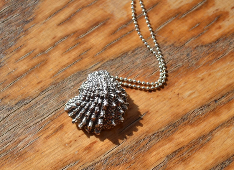READY TO SHIP Spiky Silver Shell Pendant Necklace Spiky image 0
