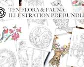 10 Flora and Fauna PDF - Illustration PDF Bundle