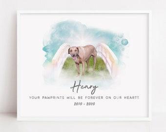 Pawprints On My Heart - Pet Memorial Portrait