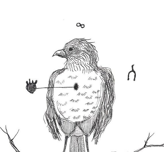 Robin Dessin Noir Et Blanc Oiseau Plume Et Encre Harbinger De Printemps