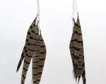 Pheasant Feather Earrings
