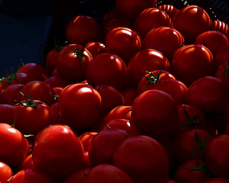 Farmer's Market Photo Harvest Produce Stand Tomato image 0