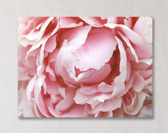 Peony Gallery Wrapped Canvas, Canvas Photography, Floral Canvas, Botanical Art, Ready to Hang, Canvas Wall Art, Fine Art Gallery Wrap,