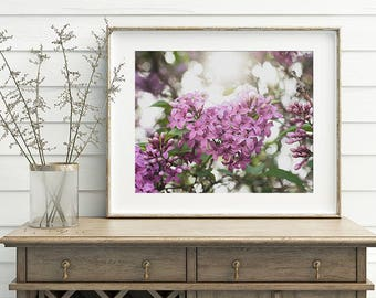 Spring Gifts, Shabby Chic Lilac Photo, Lilac Print, Lilac Photograph, Floral Spring Decor, Lilac Art, large bedroom art, purple wall art