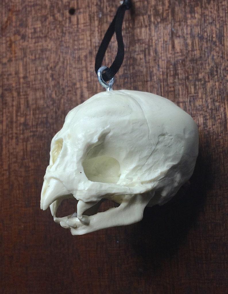Nosferatu Fetal Skull Ornament image 0