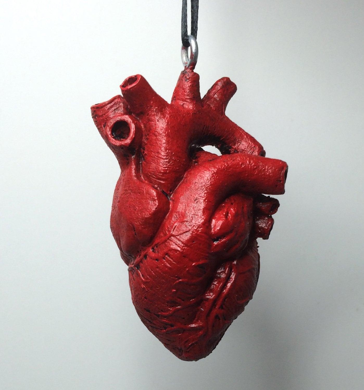 Anatomical heart drawing – Codex Anatomicus   Human Heart Art