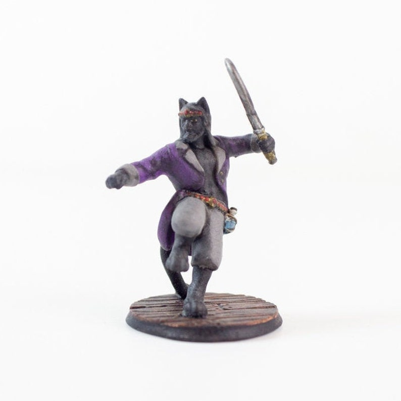 Tabaxi Rogue/Fighter (Black Cat) Hand Painted Miniature