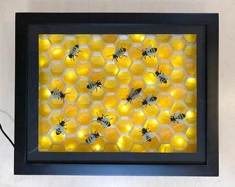 3D Beehive Light Display